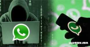 5 Tips Menghindari Penipuan Lewat WhatsApp